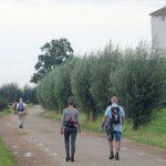 leientocht-zon-19-20